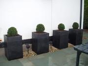 Camellia Landscapes,  Landscaping , Patio Construction, Garden Design,  Lawn Services, CORK