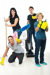 Octopus Services - Window and House Cleaning services